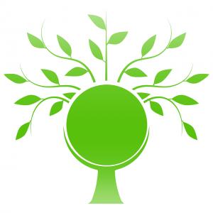 Produkty pochodzenia ekologicznego